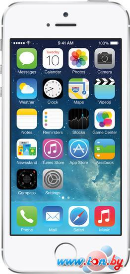 Смартфон Apple iPhone 5s 16GB Silver в Могилёве