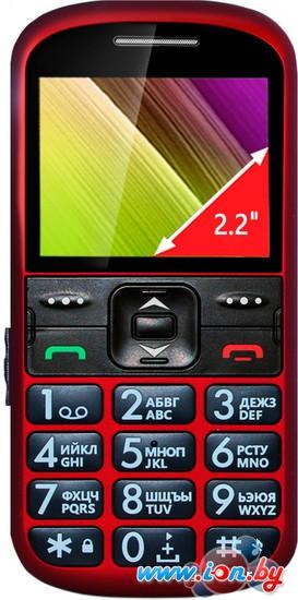 Мобильный телефон Ginzzu R12D Red в Могилёве