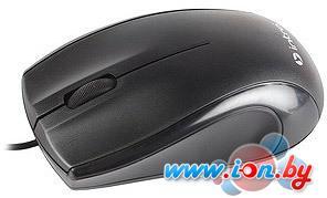 Мышь Intro MU111 Black (50) в Могилёве