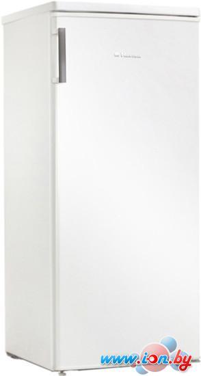 Холодильник Hansa FM208.3 в Могилёве