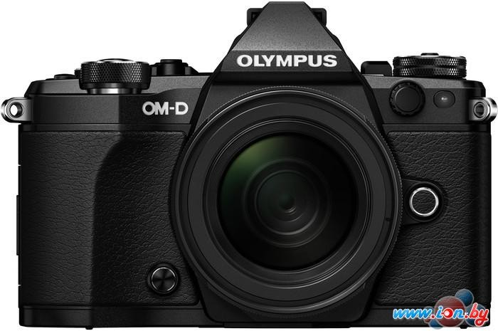 Фотоаппарат Olympus OM-D E-M5 Mark II Kit 12-50mm в Могилёве