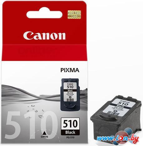 Картридж для принтера Canon PG-510 Black в Могилёве