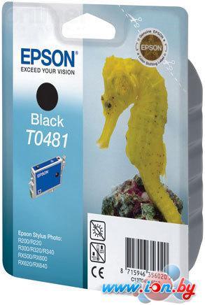 Картридж для принтера Epson EPT04814010 (C13T04814010) в Могилёве