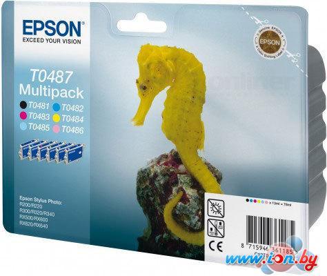 Картридж для принтера Epson EPT04874010 (C13T04874010) в Могилёве
