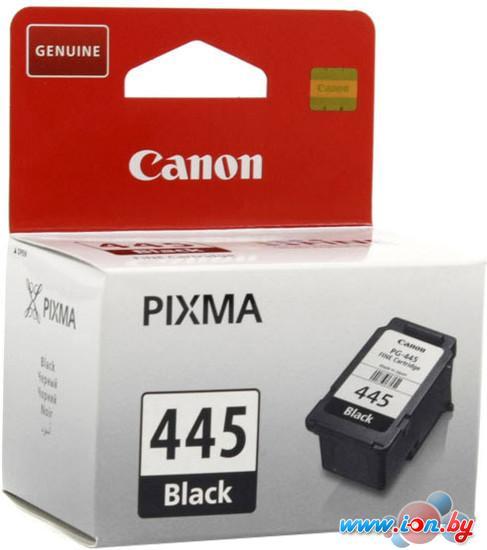 Картридж для принтера Canon PG-445 в Могилёве