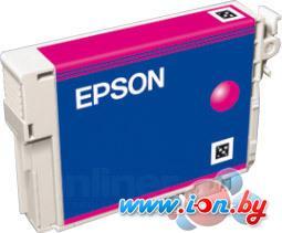 Картридж для принтера Epson EPT08034010 (C13T08034010) в Могилёве