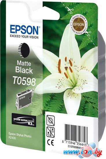 Картридж для принтера Epson C13T05984010 в Могилёве