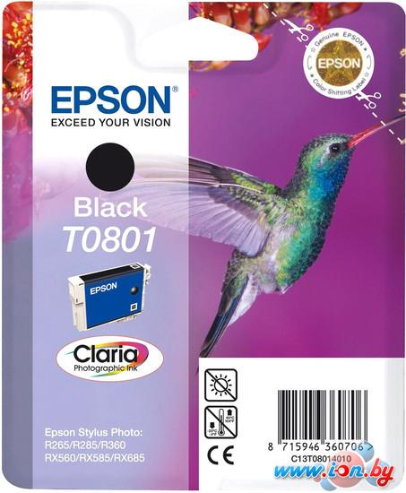 Картридж для принтера Epson C13T08014011 в Могилёве