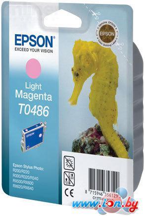 Картридж для принтера Epson EPT04864010 (C13T04864010) в Могилёве