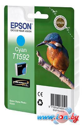 Картридж для принтера Epson C13T15924010 в Могилёве