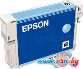 Картридж для принтера Epson EPT08054010 (C13T08054010) в Могилёве
