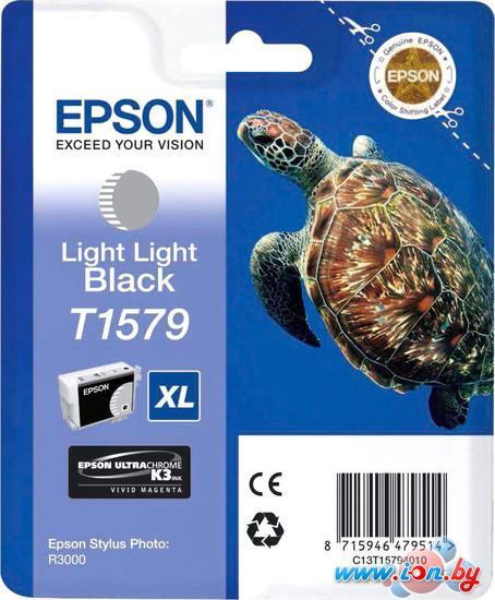Картридж для принтера Epson C13T15794010 в Могилёве