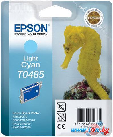 Картридж для принтера Epson EPT04854010 (C13T04854010) в Могилёве