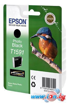 Картридж для принтера Epson C13T15914010 в Могилёве