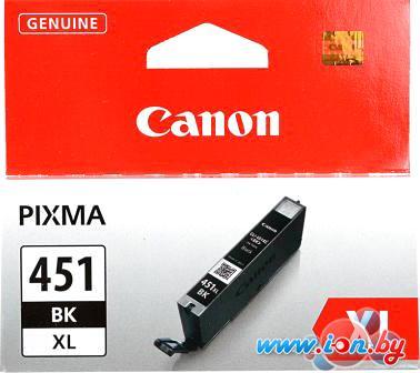 Картридж для принтера Canon CLI-451BK XL в Могилёве