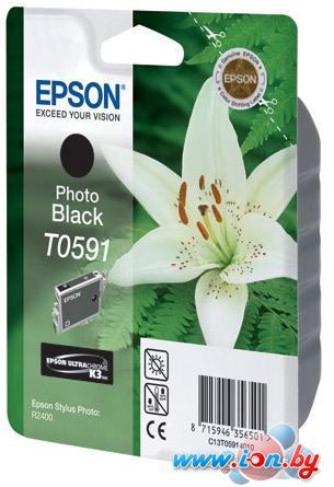 Картридж для принтера Epson C13T05914010 в Могилёве