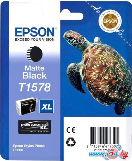 Картридж для принтера Epson C13T15784010 в Могилёве