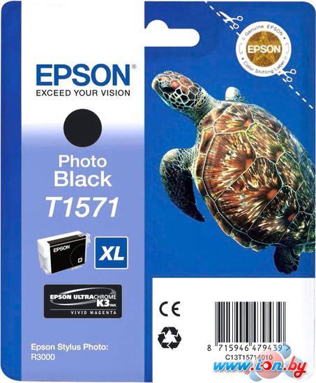 Картридж для принтера Epson C13T15714010 в Могилёве