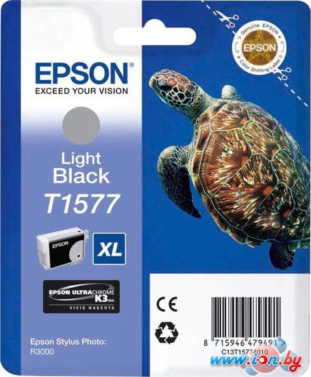 Картридж для принтера Epson C13T15774010 в Могилёве