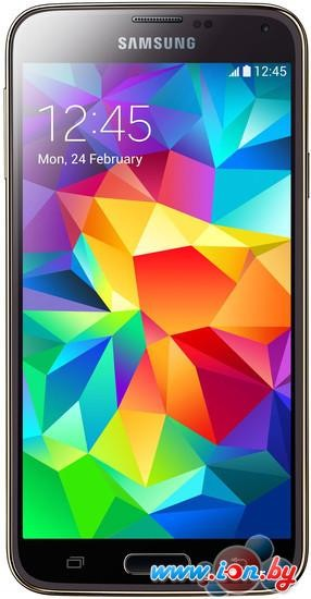 Смартфон Samsung Galaxy S5 Duos 16GB Copper Gold [G900FD] в Могилёве