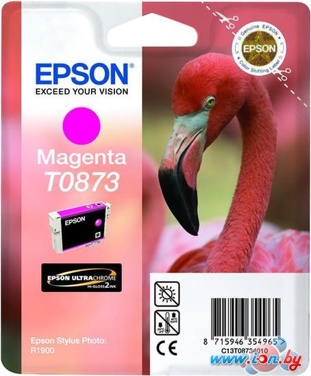 Картридж для принтера Epson C13T08734010 в Могилёве