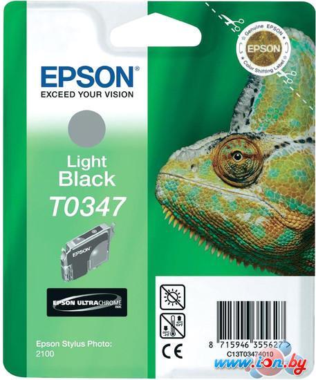 Картридж для принтера Epson C13T03474010 в Могилёве