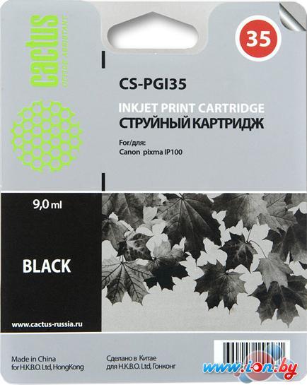 Картридж для принтера CACTUS CS-PGI35 в Могилёве
