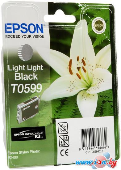 Картридж для принтера Epson C13T05994010 в Могилёве