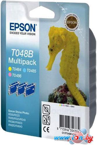 Картридж для принтера Epson EPT048B4010 (C13T048B4010) в Могилёве