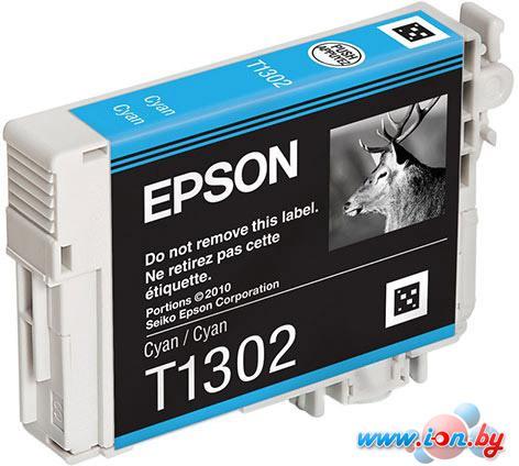 Картридж для принтера Epson C13T13024010 в Могилёве