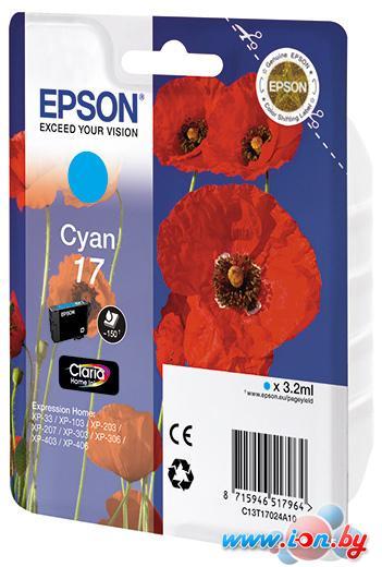 Картридж для принтера Epson C13T17024A10 в Могилёве