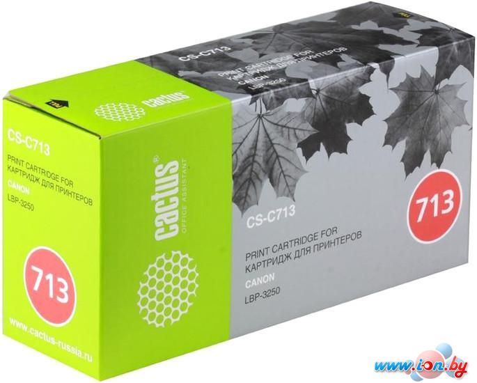 Картридж для принтера CACTUS CS-C713 в Могилёве