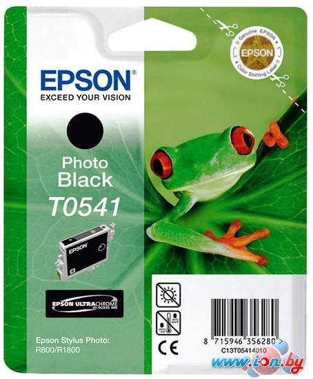 Картридж для принтера Epson C13T054140 в Могилёве
