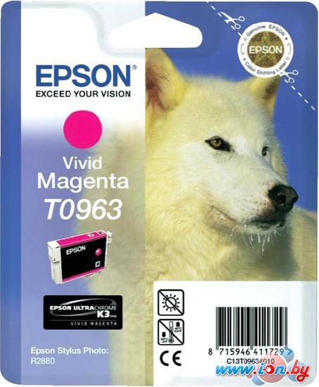 Картридж для принтера Epson C13T09634010 в Могилёве