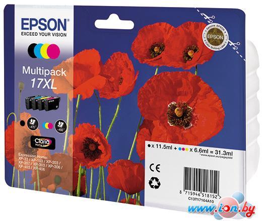Картридж для принтера Epson C13T17164A10 Multipack в Могилёве