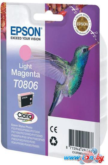 Картридж для принтера Epson C13T08064011 в Могилёве