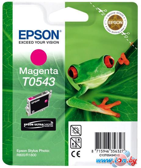 Картридж для принтера Epson C13T054340 в Могилёве