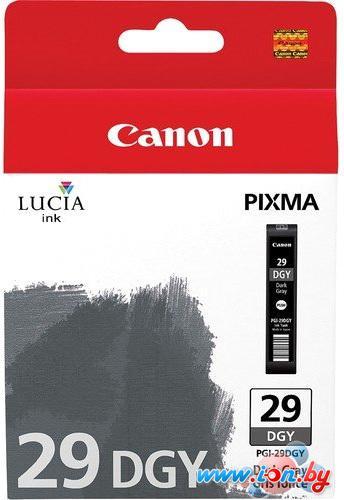 Картридж для принтера Canon PGI-29DGY (4870B002) в Могилёве