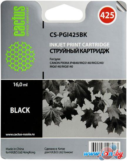 Картридж для принтера CACTUS CS-PGI425BK в Могилёве