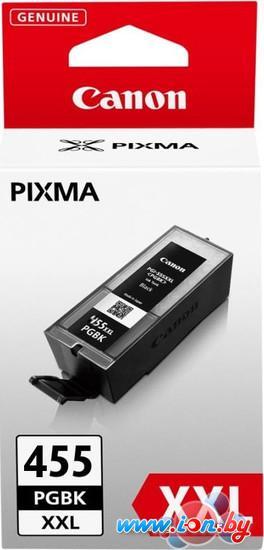 Картридж для принтера Canon PGI-455PGBK XXL Black в Могилёве