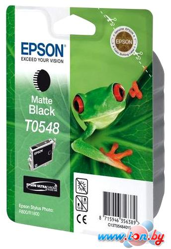 Картридж для принтера Epson C13T054840 в Могилёве