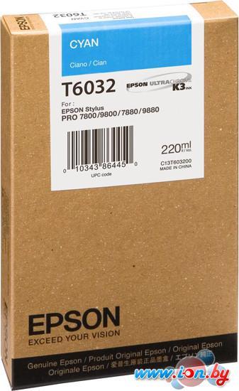 Картридж для принтера Epson C13T603200 в Могилёве