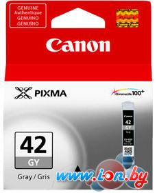 Картридж для принтера Canon CLI-42GY в Могилёве