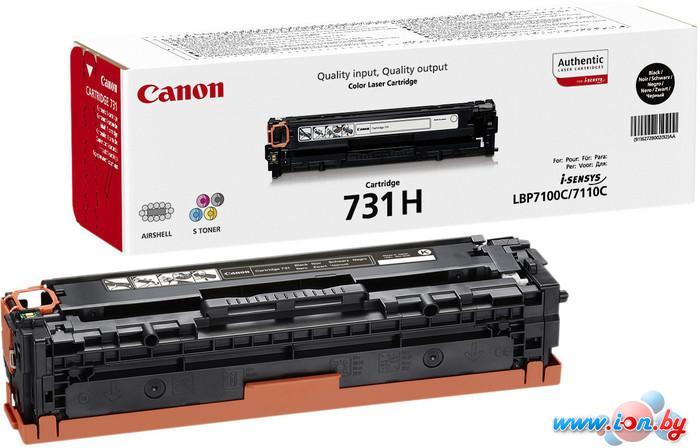 Картридж для принтера Canon 731H Bk в Могилёве