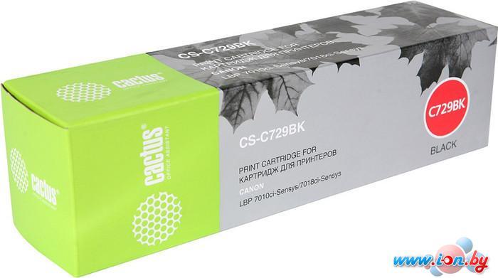 Картридж для принтера CACTUS CS-C729BK в Могилёве