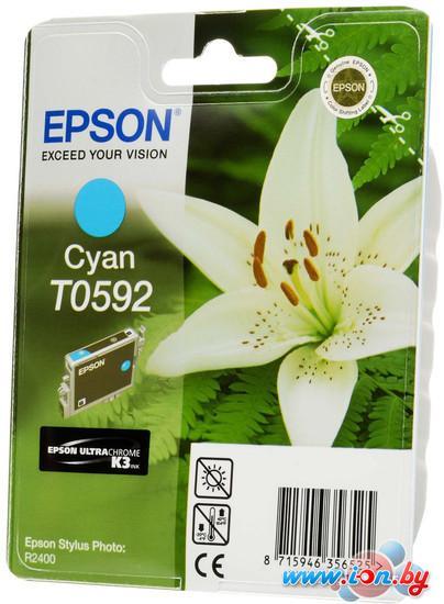 Картридж для принтера Epson C13T05924010 в Могилёве