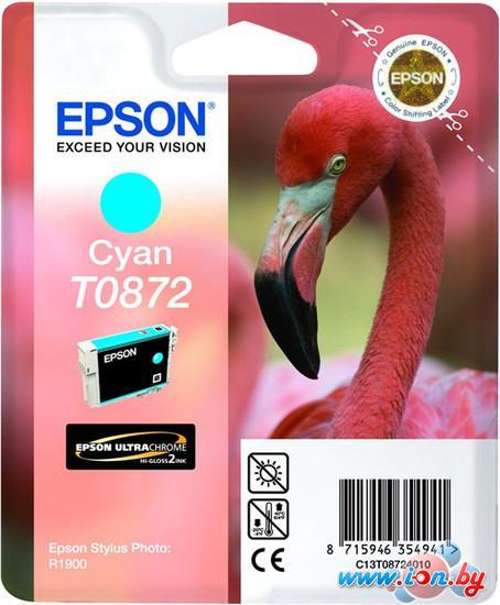 Картридж для принтера Epson C13T08724010 в Могилёве