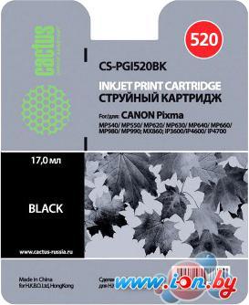 Картридж для принтера CACTUS CS-PGI520BK в Могилёве