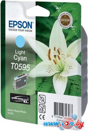 Картридж для принтера Epson C13T05954010 в Могилёве