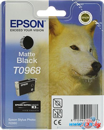 Картридж для принтера Epson C13T09684010 в Могилёве